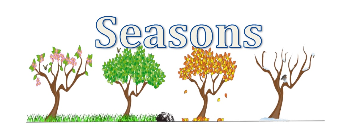 Interactive Lesson: Seasons